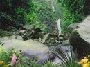 AD Jungle Waterfall - Animated Desktop Wallpaper