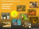 African Animals Screensaver