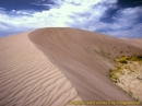 American Sand Dunes