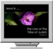 Names of Christ Screen Saver