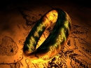 The Lord of the Rings: The One Ring 3D Screensaver