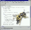 Wasp Static Error Checker