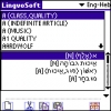 LingvoSoft Dictionary English &lt;-&gt; Hebrew for Palm OS