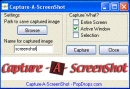 Capture-A-ScreenShot