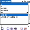 LingvoSoft Dictionary German <-> Czech for Palm OS