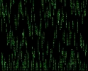 Another Matrix Screen Saver