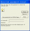 Asterisk Password Reveal