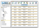 Splendid City Sports Scheduling Software