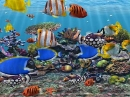 Protector de pantalla Banco de Peces en 3D (3D Fish School Screensaver)