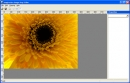 Imagination Image Map Editor