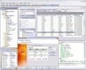 EMS SQL Manager 2005 Lite for InterBase/Firebird