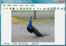 Visualizador de Im�genes AD Lite (AD Picture Viewer Lite)