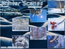 Winter Scenes Screensaver