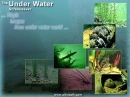 Under Water Screensaver