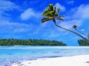 Tropical Beach Living Desktop - Escritorio Viviente Playa Tropical (Tropical Beach Living Desktop)