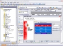 EMS SQL Manager 2007 Lite for Oracle
