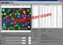 Pixcavator Image Analysis Software
