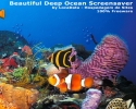 Beautiful Deep Ocean