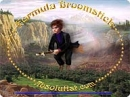 Formula Broomstick