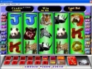 slots_gowild