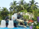 Tropic Waterfall