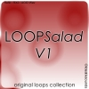 LOOPSalad V1