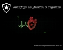 Botafogo Soccer Club Screensaver