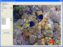 Aquarium Screensaver Maker