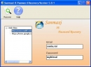 Email accounts passwords restoration software