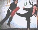 Affiliate Package for Solo Martial Arts
