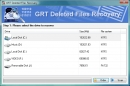GRT Deleted Files Recovery for NTFS