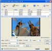 Torrent DVD Audio Ripper