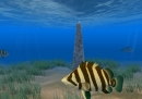 Tiger Fish Screensaver