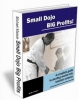 FREE Martial Arts Ebook Small Dojo Big P