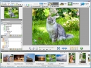 Editor de Fotograf�as Artensoft (Artensoft Photo Editor)
