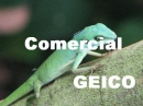 Gieco Comercial