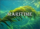 Maritime Screen Saver