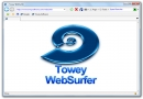Towey WebSurfer