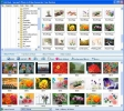 Photo to Video Converter Free Version