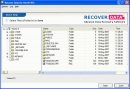 Software de recuperaci�n de Datos NSS (NSS Data Recovery Software)