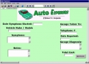 Auto Expenses