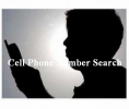 Cellular Phone Search