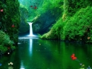 Cascadas Verdes (Green Waterfalls)