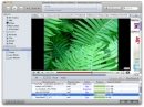 SWF &amp; FLV Player for Mac
