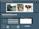 Dog Life Jacket Guide  Banner Software