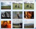 Photo Browse and Paste Portable Version