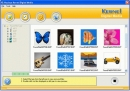 Kernel for Digital Photo Recovery