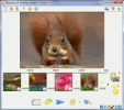 SlideShow Maker Freeware