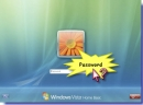 Reset Vista Password