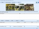 Pergola Designs Guide  Hits Tracking